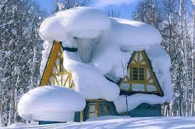 Зимний уход за участком