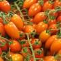 Как увеличить урожай помидоров, помидоры, томаты
