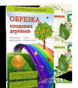 Видеокурсы Платные материалы Обрезка плодовых деревьев