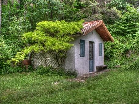 Где посадить виноград Дом