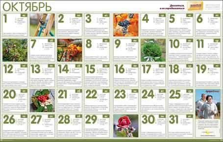 Календарь-Октябрь