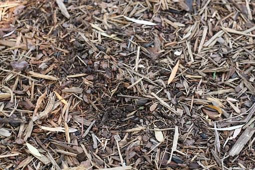 Осеннее мульчирование почвы